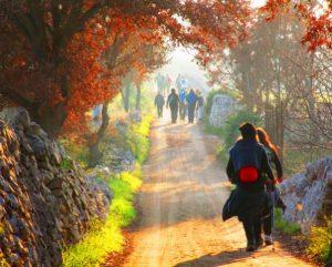 7 tappa Alberobello - Martina Franca