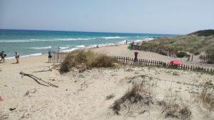 Spiaggia libera, parco delle dune costiere (2)