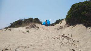 Spiaggia libera, parco delle dune costiere (3)