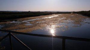 fiume morelli (5)