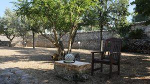 il giardino del melograno (4)