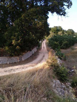 Tratturo della Valle d'Itria